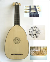 7 course lute